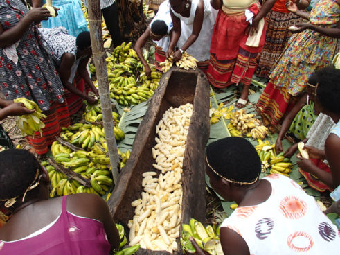 making banana beer in uganda
